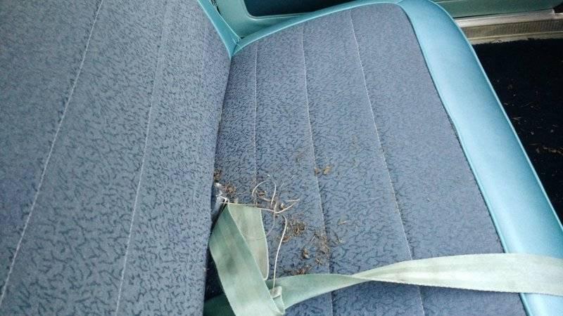 1965-Dodge-Dart-sete-full-av-rusk-d.jpg