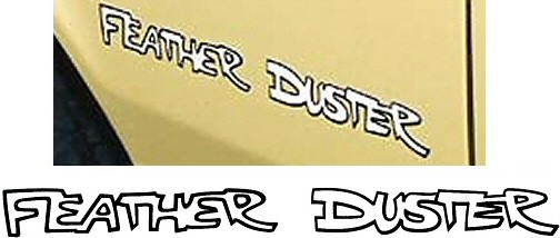 76_Feather_Duster.jpg