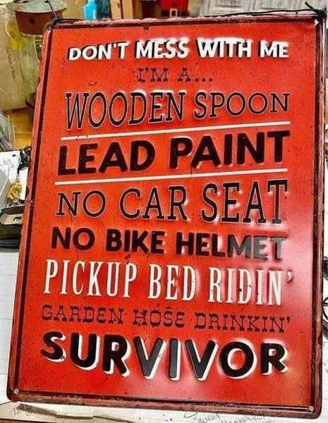 dont-mess-with-wooden-spoon-lead-paint-no-bike-helmet-survivor.jpg