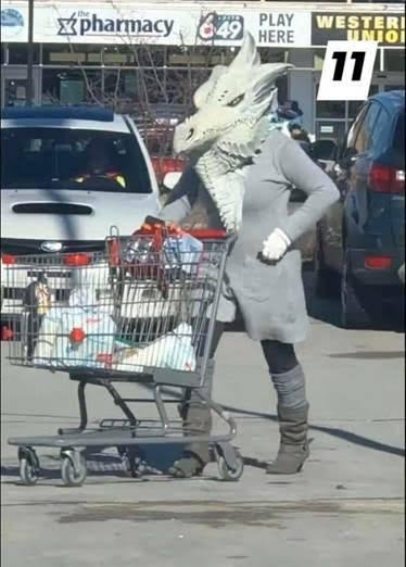 dragon grocery shopper.jpg