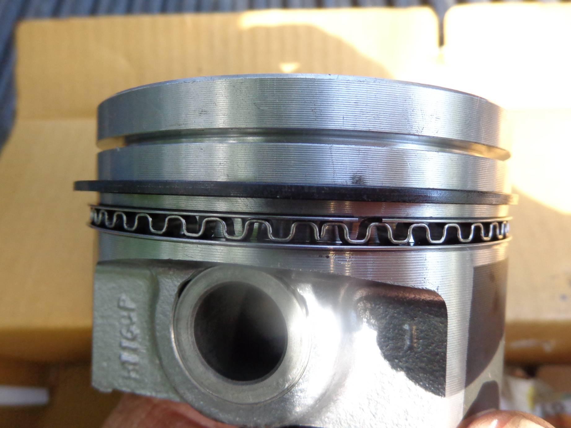 DSC09976 B.JPG