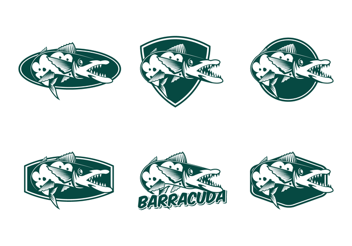 free-barracuda-vector.png
