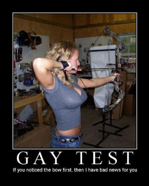 Gay Test Bow.jpg
