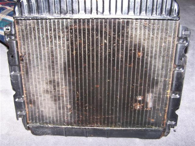 RadiatorFront (Large) (Small).JPG