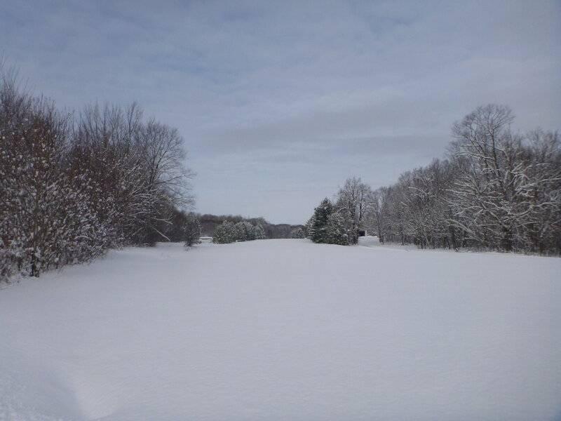 snowplowdec262020 010.JPG