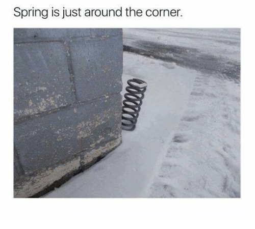spring-is-just-around-the-corner-16259157.png