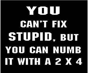 Stupid 03.jpg