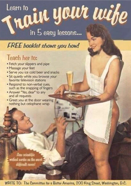 train-your-wife-in-5-easy-lessons.jpg